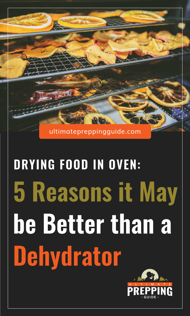 """Text area which says """"Drying Food in Oven: 5 Reasons it May be Better than a Dehydrator, ultimatepreppingguide.com"""" followed by a photo of dried fruits in an oven"""