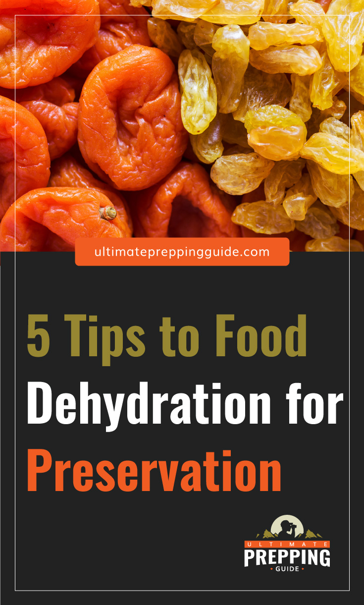 """Text area which says """"5 Tips to Food Dehydration for Preservation, ultimatepreppingguide.com"""" followed by a photo of dried fruits"""