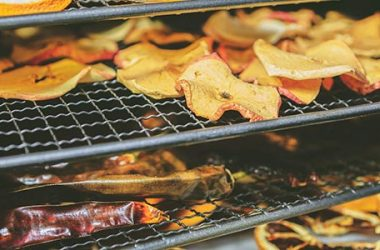 Drying Food in Oven: 5 Reasons it May be Better than a Dehydrator | ultimatepreppingguide.com